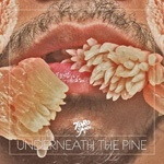 TORO Y MOI, underneath the pine cover