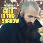 Cover WILLIAM FITZSIMMONS, gold in the shadow