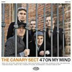 Cover CANARY SECT, 47 on my mind
