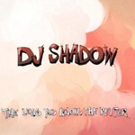 Cover DJ SHADOW, less you know the better