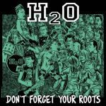 H2O, don´t forget your roots cover