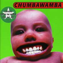 CHUMBAWAMBA, tubthumber cover