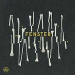 Cover FENSTER, bones