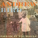 ANDREW BIRD, break it yourself cover