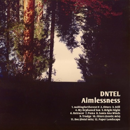 Cover DNTEL, aimlessness