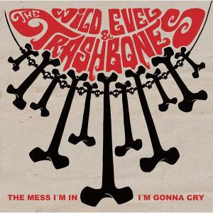 Cover WILD EVEL & THE TRASHBONES, the mess i´m in